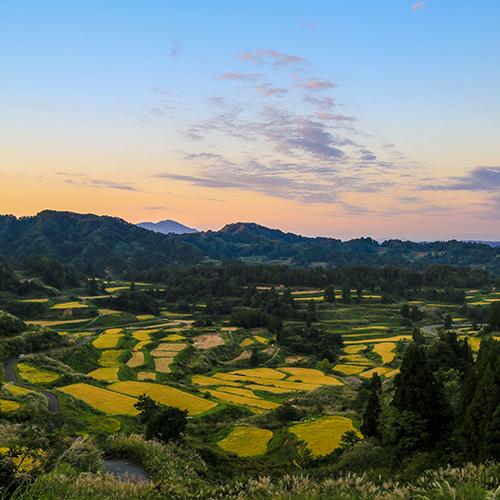 Niigata 1
